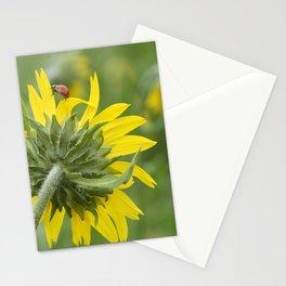 Ladybug climbing wildflower Stationery Cards