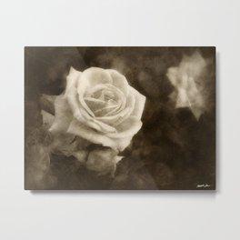 Pink Roses in Anzures 1 Antiqued Metal Print