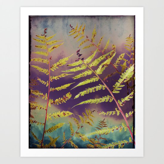 Faded Bracken Art Print