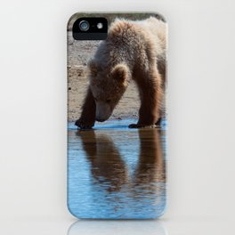 Grizzly Cub Drinking from Stream  Alaska Katmai National Park #Socety6 iPhone Case