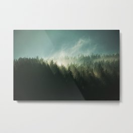 In the end Metal Print