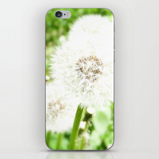 DANDELION iPhone & iPod Skin