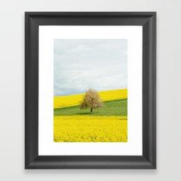 Tree 2 Framed Art Print
