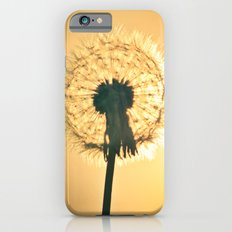 Sunburst Slim Case iPhone 6s