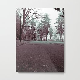 Historic Water Ditch Trail Metal Print