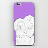 yorkie iPhone & iPod Skins featuring Yorkie by FeliciaR