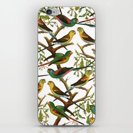 Colorful red green tropical birds parakeets pattern iPhone Skin