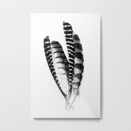 Monochrome Feather Collection Metal Print