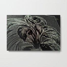 Dieffenbachia DPPA160127b Metal Print