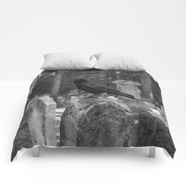 Crow In Shades Of Stone Comforters