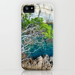 Tree in a creek iPhone Case