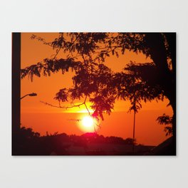 evening silhouettes 1 Canvas Print