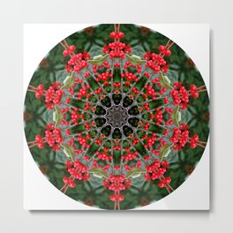 Winterberry holly, Ilex verticillata, mandala/kaleidoscope. Metal Print