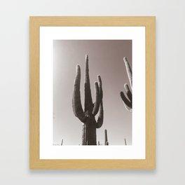 Sauguaros in B+W Framed Art Print