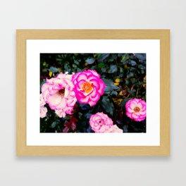 little roses Framed Art Print