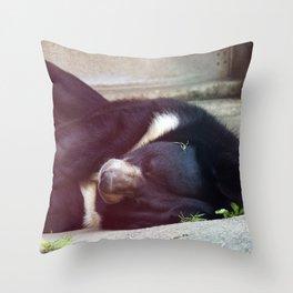 Philadelphia Zoo Series 31 Throw Pillow