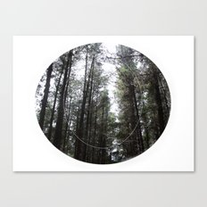 Revealed Canvas Print