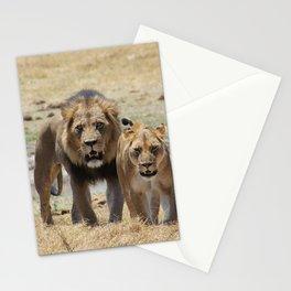 Lion_20180704_by_JAMFoto Stationery Cards