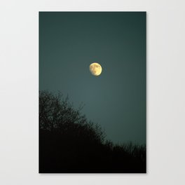 But theres a full moon rising Canvas Print