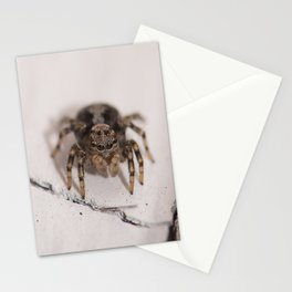 Stalking prey Stationery Cards