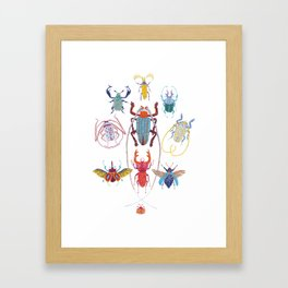 Stitches: Bugs Framed Art Print