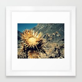 Death is no more than a turning to eternity. Framed Art Print