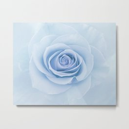 Soft Baby Blue Rose Abstract Metal Print