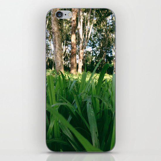 Bed of Grass iPhone & iPod Skin