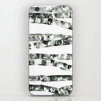 birch iPhone & iPod Skins featuring Birch    by kristinesarleyart