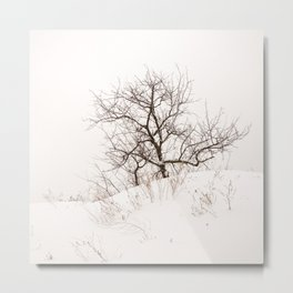 Lonely Tree on a Hill Metal Print