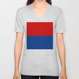Flag of Misiones Unisex V-Neck