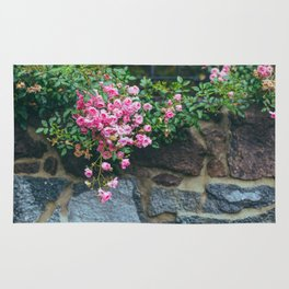 wall of roses Rug