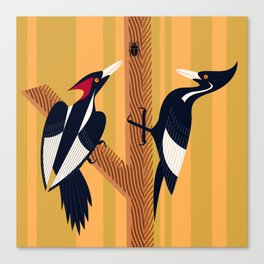 Ivory-Billed Woodpecker Canvas Print