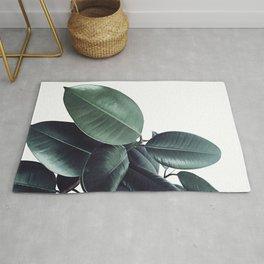 Ficus Elastica #13 #decor #art #society6 Rug