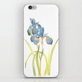 Watercolor flower Iris Siberica iPhone Skin