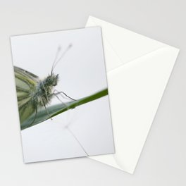Butterfly dandelion Stationery Cards