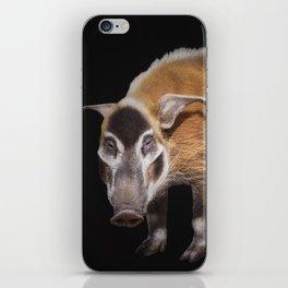 Da Vinci iPhone Skin
