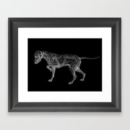 Dog Skeleton Framed Art Print
