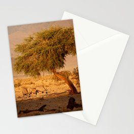 NAMIBIA ... when the sun goes down Stationery Cards