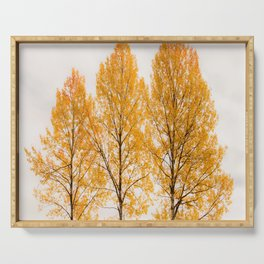 Aspen Trees #decor #buyart #society6 Serving Tray