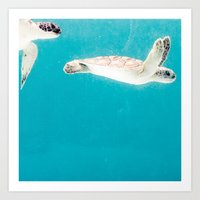 turtles Art Prints featuring Turtles by Loaded Light Photography
