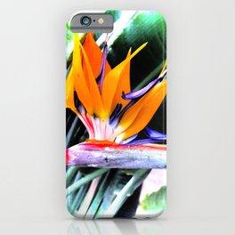 Botanic pride II iPhone Case