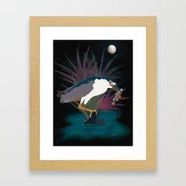 Black Crowned Night Heron Framed Art Print