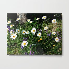 Wildflowers by the River Metal Print
