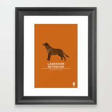 Chocolate Labrador Retriever Framed Art Print