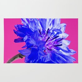 Blue fresh cornflower on the pink background Rug