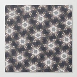 kaleidoscope bear space Canvas Print