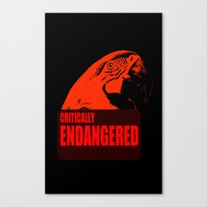 Critically Endangered Blue-throated Macaw Canvas Print