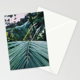 Palm leaves in a cold place Stationery Cards