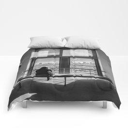 Ventana al mundo Comforters